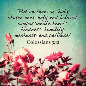 colossians3.12 floral image